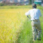 日本の農業は保護されすぎている!?